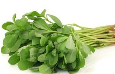 سبزی خرفه